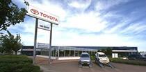 Dealerzy Toyoty w Polsce